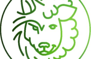 Wilk i Owca – Gabinet Psychodietetyczny Nicol Sobieraj